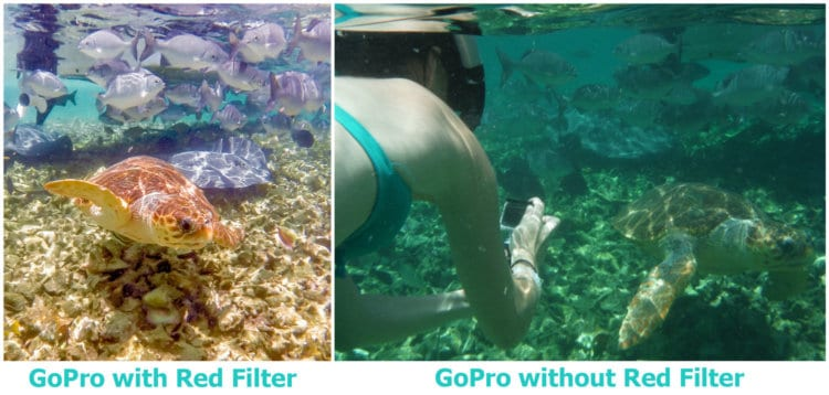 GoPro red filter comparison while snorkeling